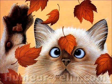 Poésie et textes Les chats et l' automne Big_3010
