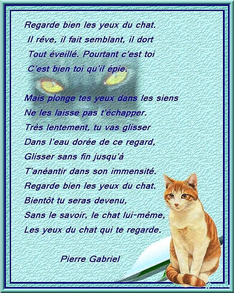 Poésie et textes Les chats et l' automne - Page 2 Vejr9a10
