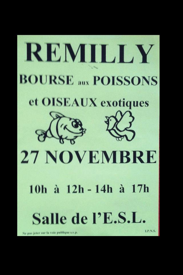 Bourse aux poissons à Rémilly - 27 novembre 2016 Img_0211