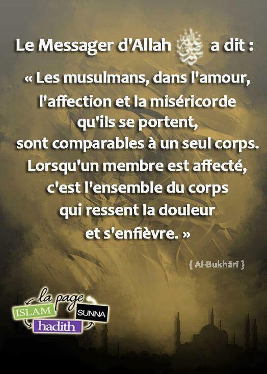 Hadith du Jour  - Page 2 14495510
