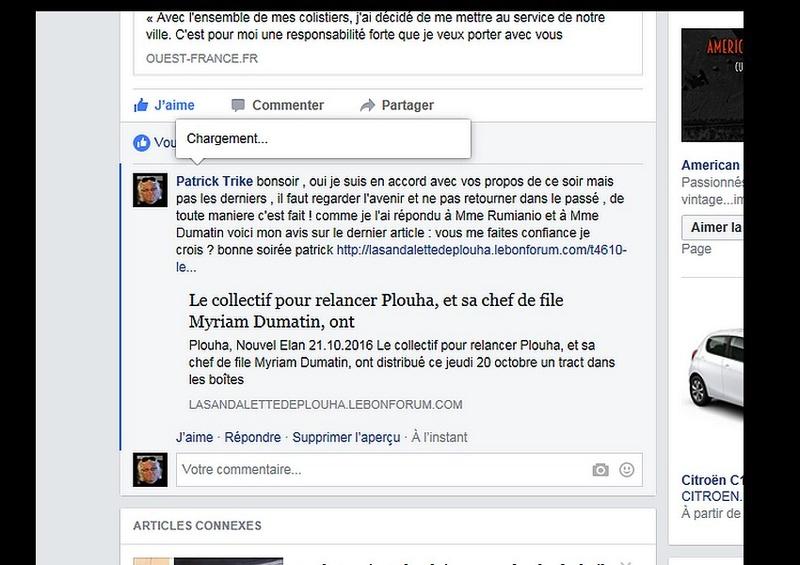 Le collectif pour relancer Plouha, et sa chef de file Myriam Dumatin, ont  Sans_396