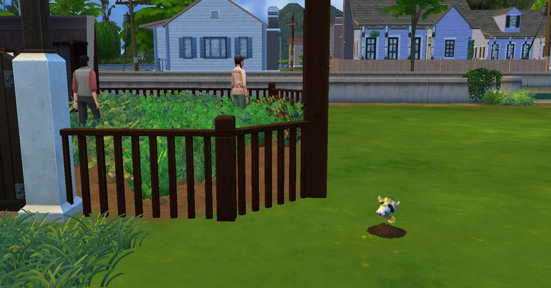 [Abandon] Challenge Jardin-Ecolo-Sims : Les Laterre ! 21-10-12