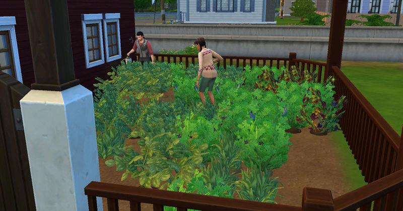 [Abandon] Challenge Jardin-Ecolo-Sims : Les Laterre ! 21-10-17