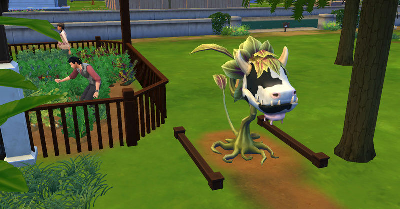 [Challenge Jardin-Ecolo-Sims] Les Laterre ! 25-10-11