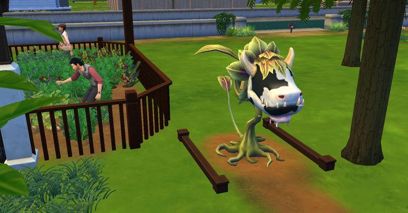 [Abandon] Challenge Jardin-Ecolo-Sims : Les Laterre ! 25-10-11