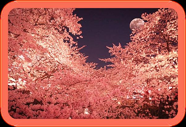 Луна Ветра. A__aaa10