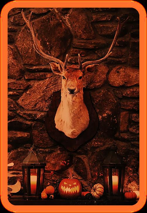 Cамхейн, Хэллоуин, Осеннее Макошье, Марина ночь, Великое Осеннее Сварожье - а что отмечаете вы?  E_210