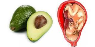 8 aliments qui soignent les organes auxquels ils ressemblent 2016-112