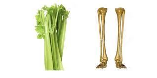 8 aliments qui soignent les organes auxquels ils ressemblent 2016-114