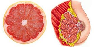 8 aliments qui soignent les organes auxquels ils ressemblent 2016-116