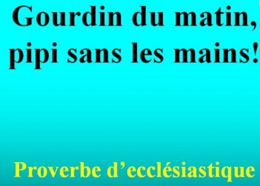 LE DICTON DU JOUR - Page 23 Dict211
