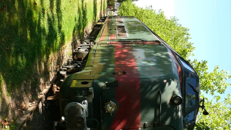 Livradois ( Ambert/Giroux-gare ) P1140945