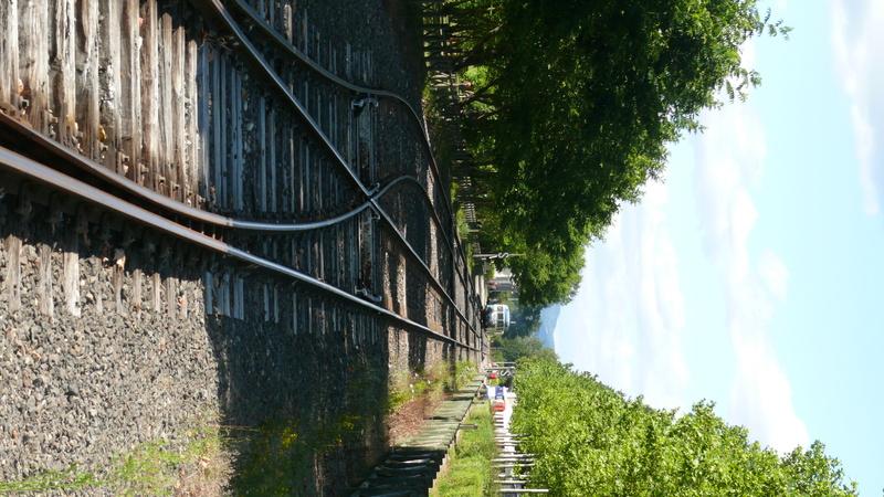 Livradois ( Ambert/Giroux-gare ) P1150020