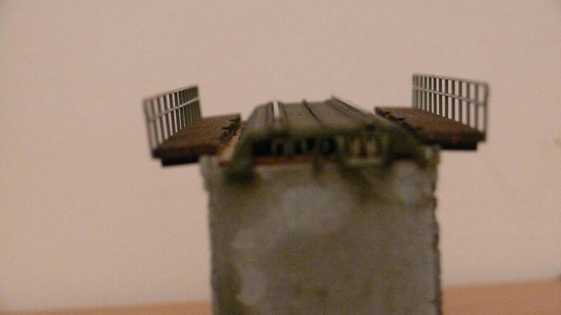 question  diorama. P1150527
