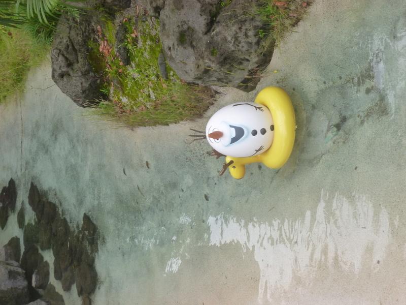 4,5 jours au coeur de la magie à Tokyo Disney Resort juin 2016 - Page 2 P1070726