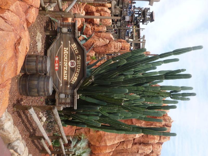 4,5 jours au coeur de la magie à Tokyo Disney Resort juin 2016 - Page 2 P1070816