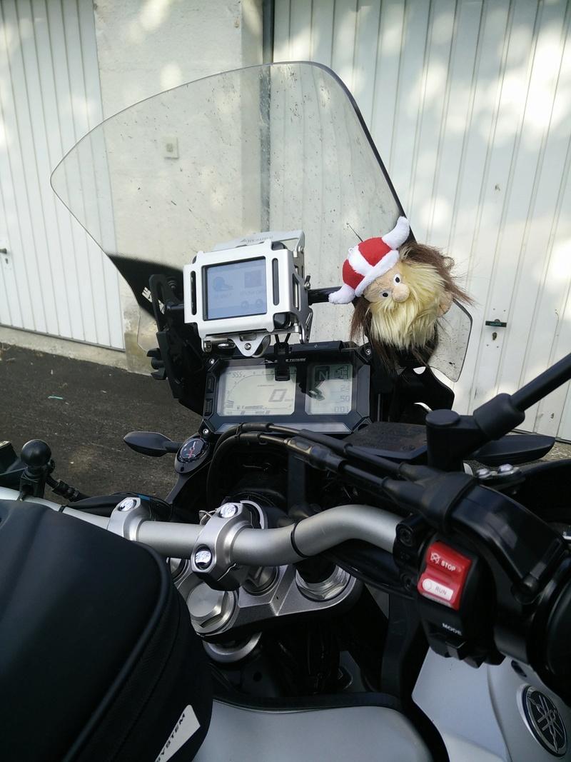 transportez vous votre animal domestique a moto? Img_2010