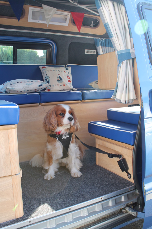 Hey whats in yer van today? - Page 10 Img_1610