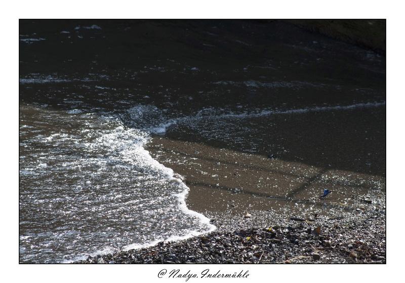Collioure, petit coin de paradis Cadr2010