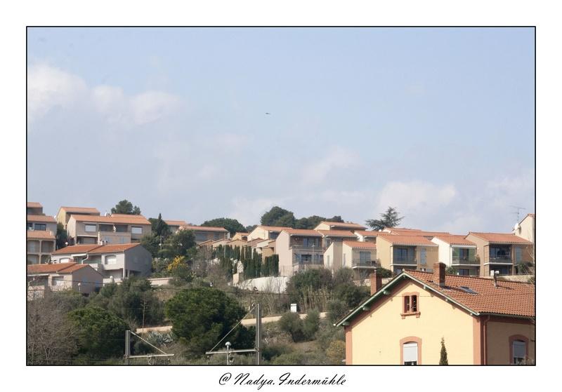 Collioure, petit coin de paradis Cadr2012