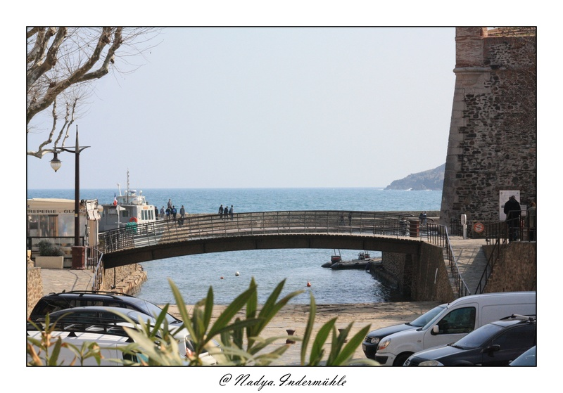 Collioure, petit coin de paradis Cadr2015