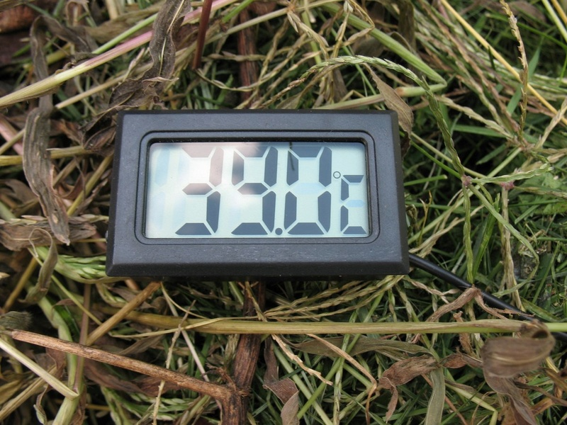 2 - TrolleyDriver's Compost Thermometer Img_2510