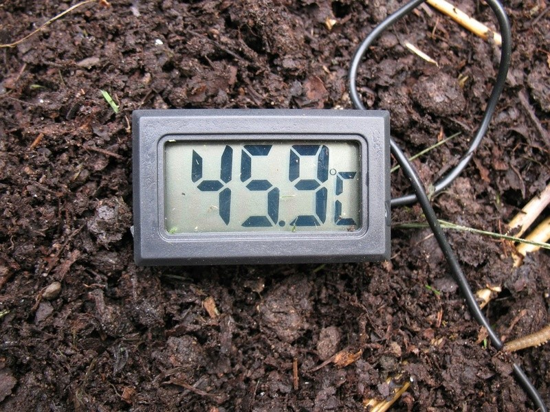 2 - TrolleyDriver's Compost Thermometer Img_2513