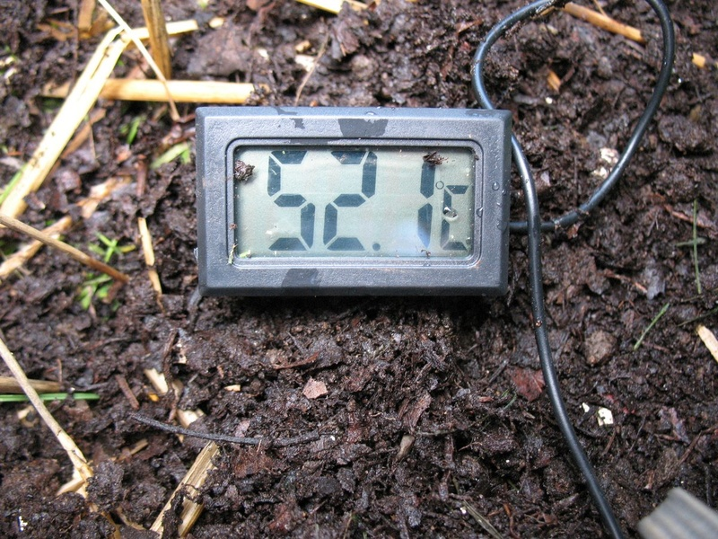 2 - TrolleyDriver's Compost Thermometer Img_2514