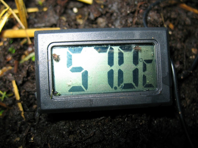 2 - TrolleyDriver's Compost Thermometer Img_2610