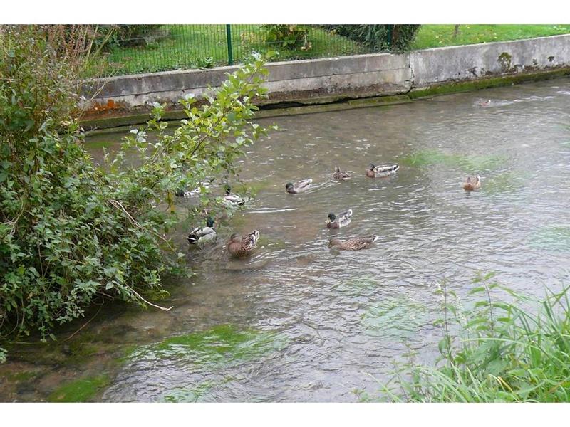 A la claire Fontaine…. le Bourg Fontai13