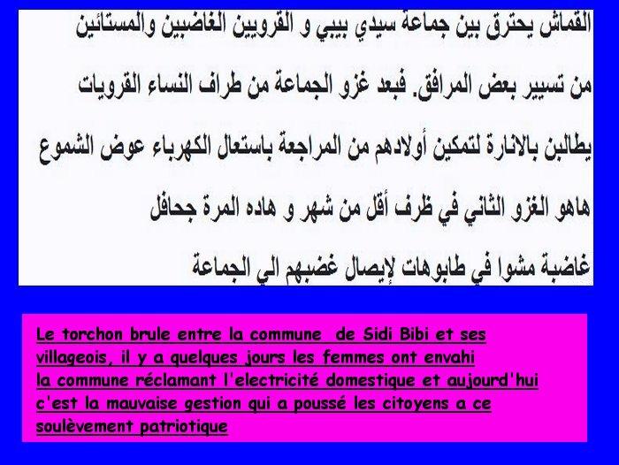 Invasion commune Sidi Bibi غزو جماعة سيدي بيبي من طرف السكان الغيورين Sidibi12