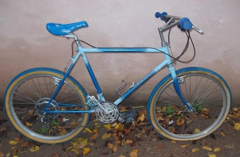 VTT Le MONTAGNARD 15 vitesses 1984-86  Dscn9242