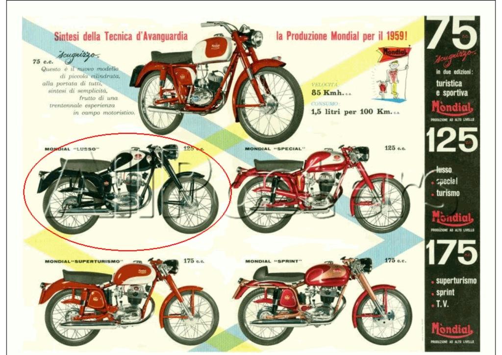 MONDIAL 125cc Spécial 1959. 75cc-110