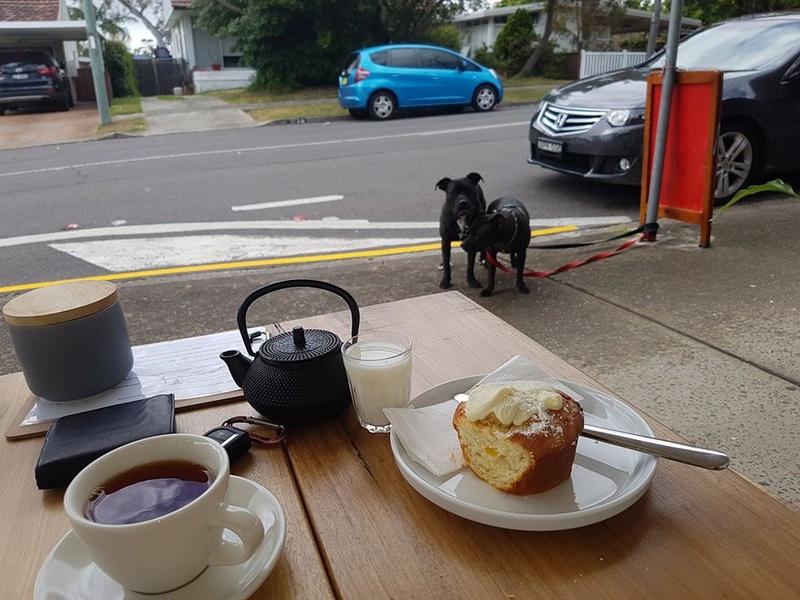 Rosie Eddie and a cup of tea. Img_0211