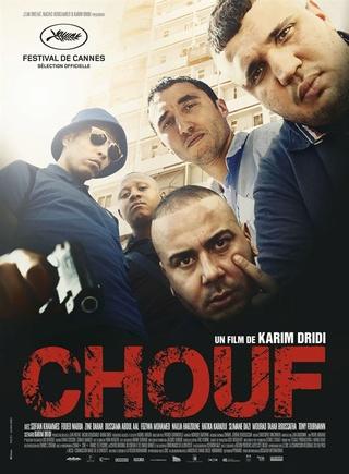 CHOUF Chouf10