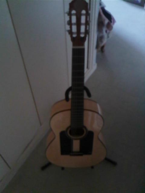 présentation de ma nouvelle flamenca WACHO54 - Page 4 Img78910