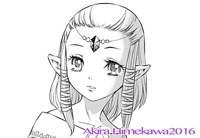 Le manga Zelda Twilight Princess!  Tumblr10