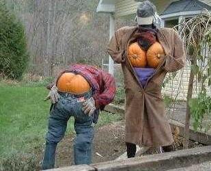 Halloween  Hallow19