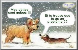 Météo en france  - Page 6 Humour32