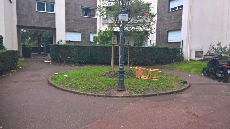 Jean Zay le jardin de M. Le Maire Jean_z11
