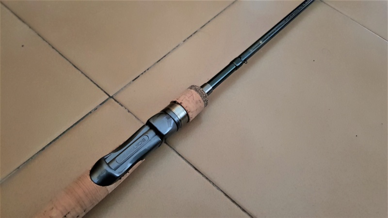 [VENDO] [NUOVA] SHIMANO TROUT NATIVE MF76L 20200613