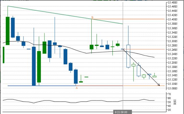 Australian Stock Exchange Report Amcor_11
