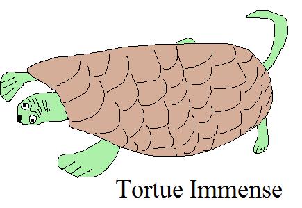 LISTE MONSTRE Tortue10