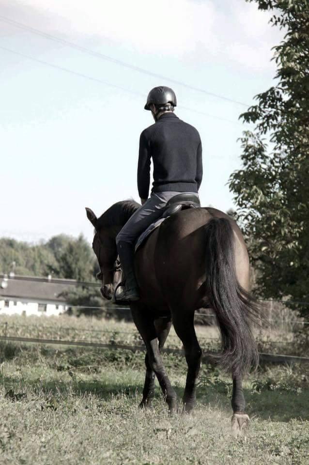 CHERCHEUR DE VERNAY - cheval de sport belge de 2008 - Page 2 Che1010