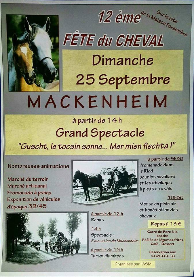 Vente de matériel équestre Mackenheim (67) le 25/09/2016  Fetema10
