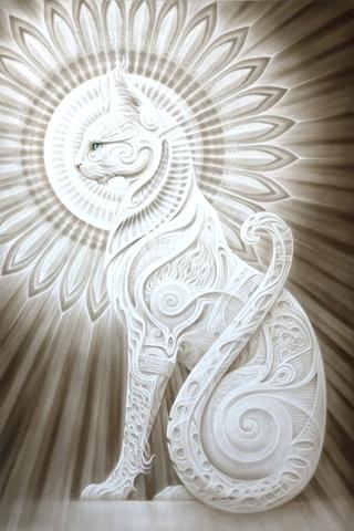 Le temple des chats 20218b11