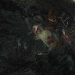 Halloween 2016 - Rocky Mountain Elk (Bestia) zombie 60f00010