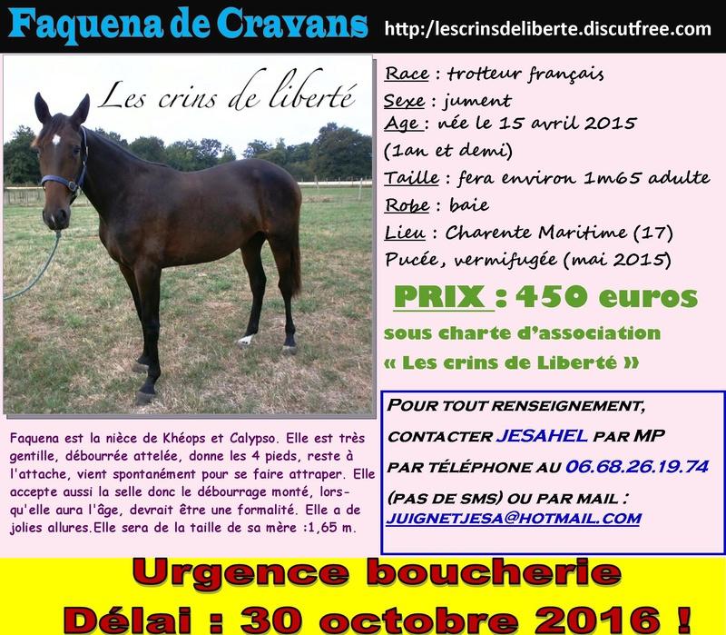 Dpt 17, TF, Faouena de Cravans et Élodie ! (Octobre 2016) Faquen10