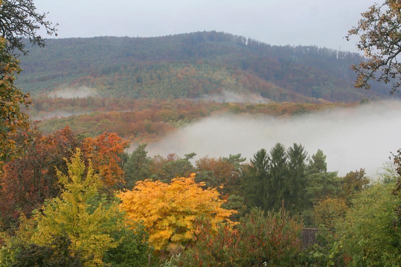 Paysages d'automne Img_3711