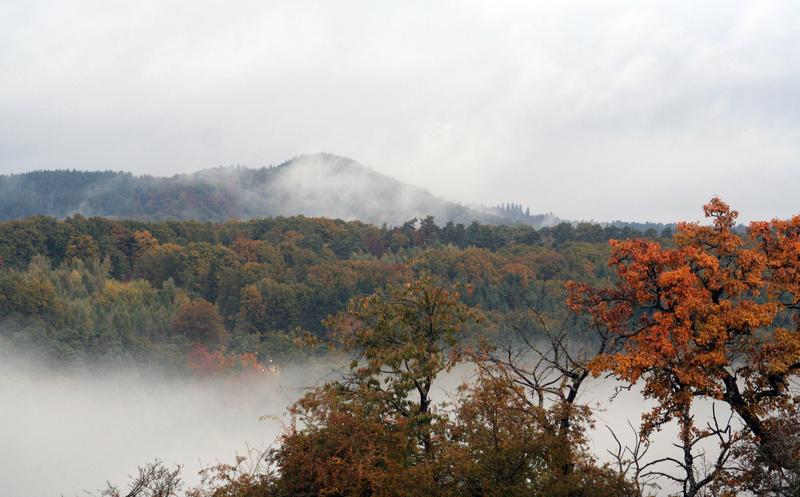 Paysages d'automne Img_3712